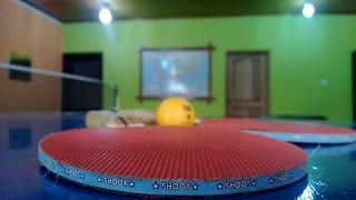 卓球のボール、なぜオレンジ?その納得の理由!!