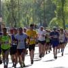 走る走る走る…!マラソン。何をしたら失格になるの?